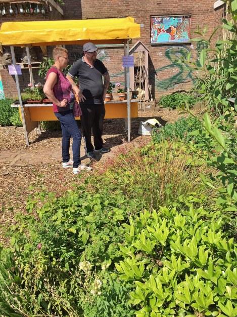 Een gezellige vruchtbare tuin, aan het Old Hickory Plein.