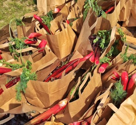 Alle bezoekers kregen een zak biologische groenten mee.